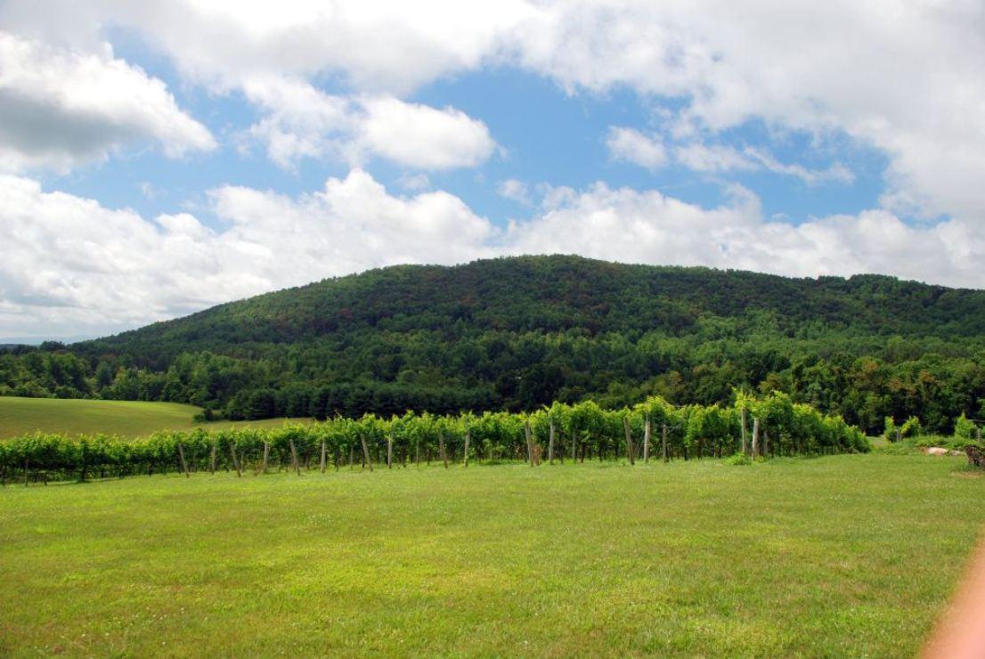 Sharp Rock Winery & Vineyard